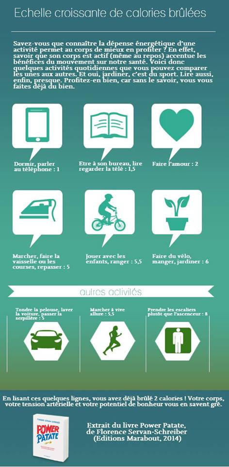 Infographie Calories